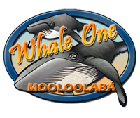 Whale One